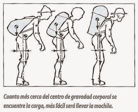 Fisioterapia: Todo sobre el Centro de Gravedad en el Cuerpo Humano ...