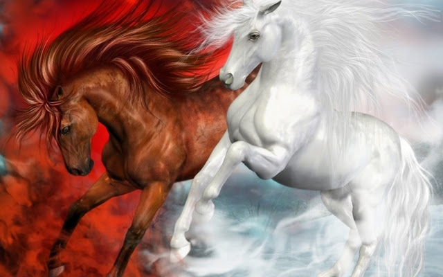 horses+pictures+%25287%2529