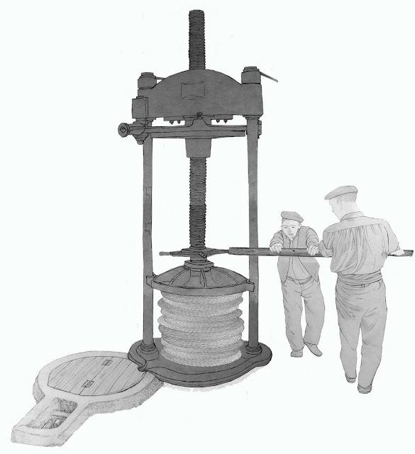 prensa, aceite, dibujo, La Pobla de Vallbona