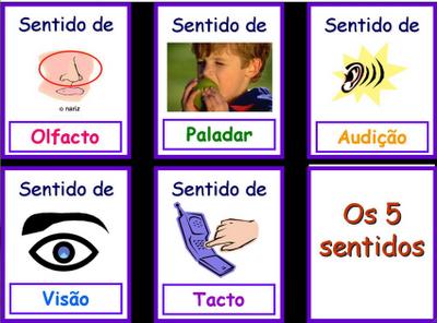Dulcy jarina os 5 sentidos for Mural de los 5 sentidos