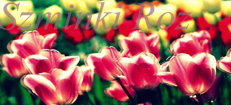 Szminki róż