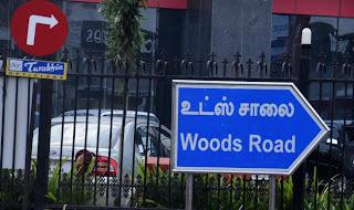 woods+road.jpg
