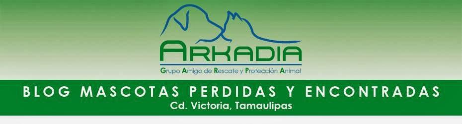 Mascotas Perdidas. Ciudad Victoria, Tamaulipas