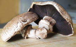 Image of two portobello mushrooms on a wooden cutting board