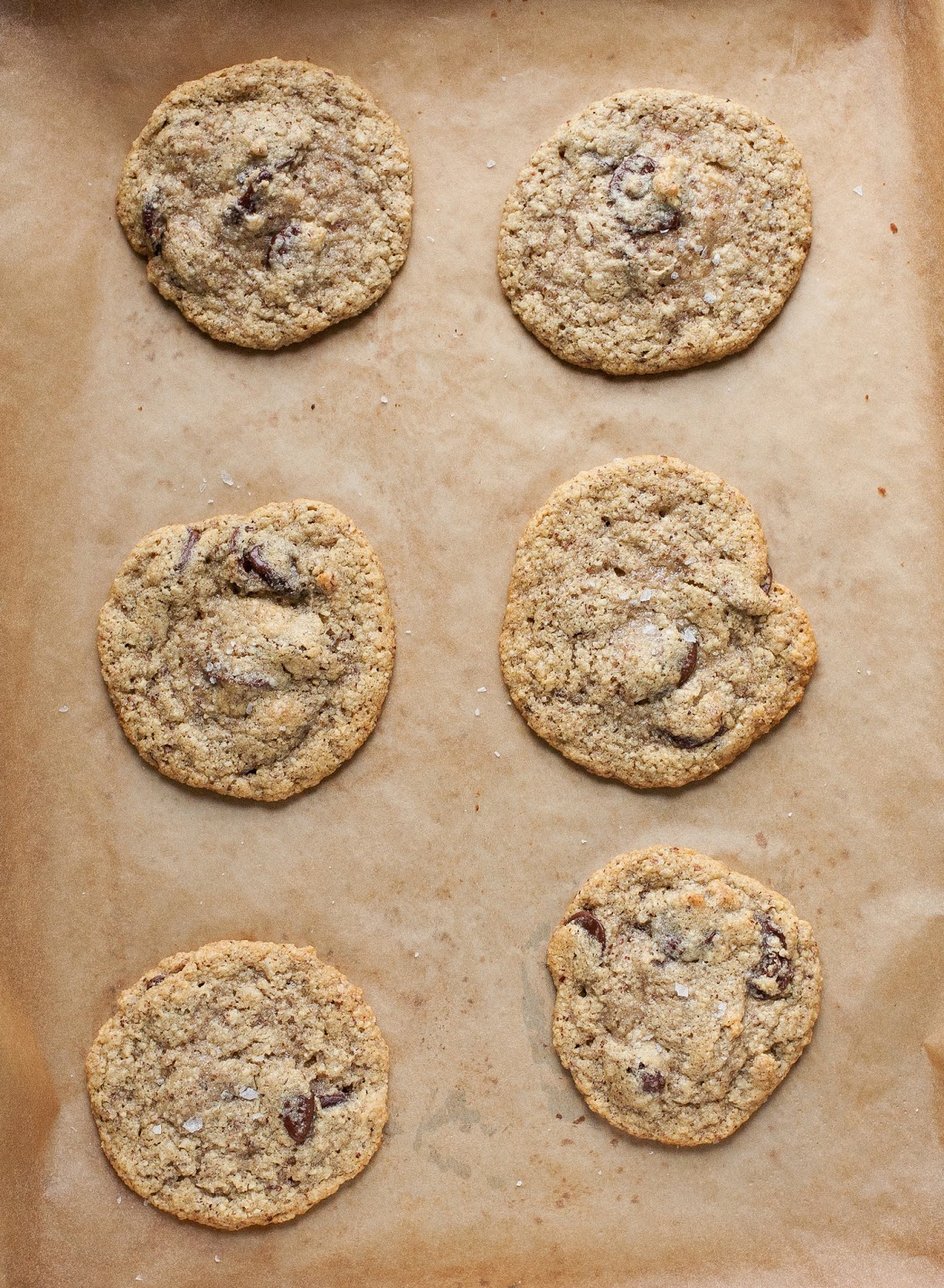 Salted Chocolate Chip Hazelnut Cookies (Grain free)