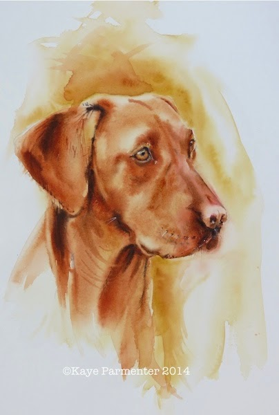 Watercolour painting of Fox Red Labrador