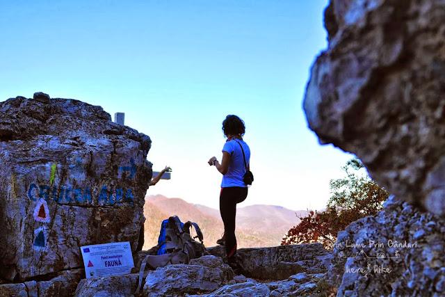 domogled-peak-hike-curcea-alba