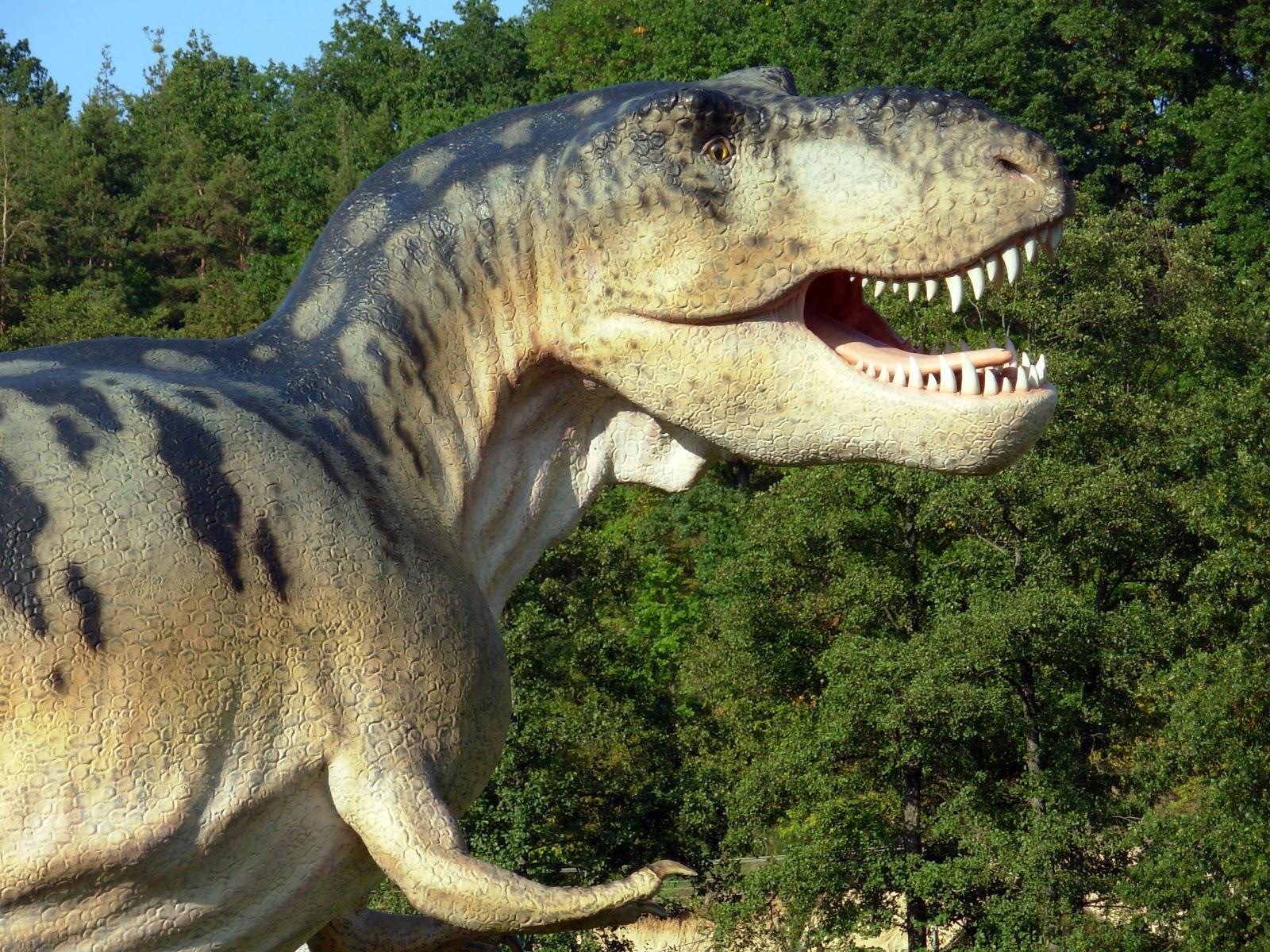Dinosaurus raamattu