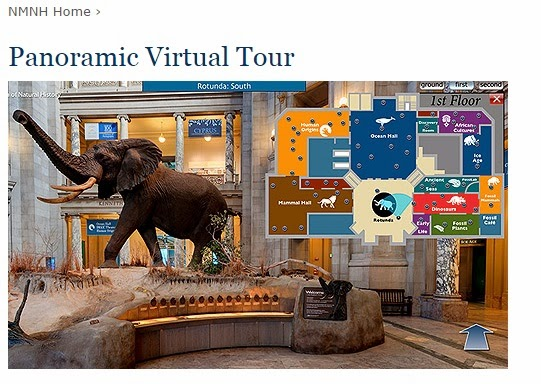 Smithsonian Natural Museum of History Virtual Tour