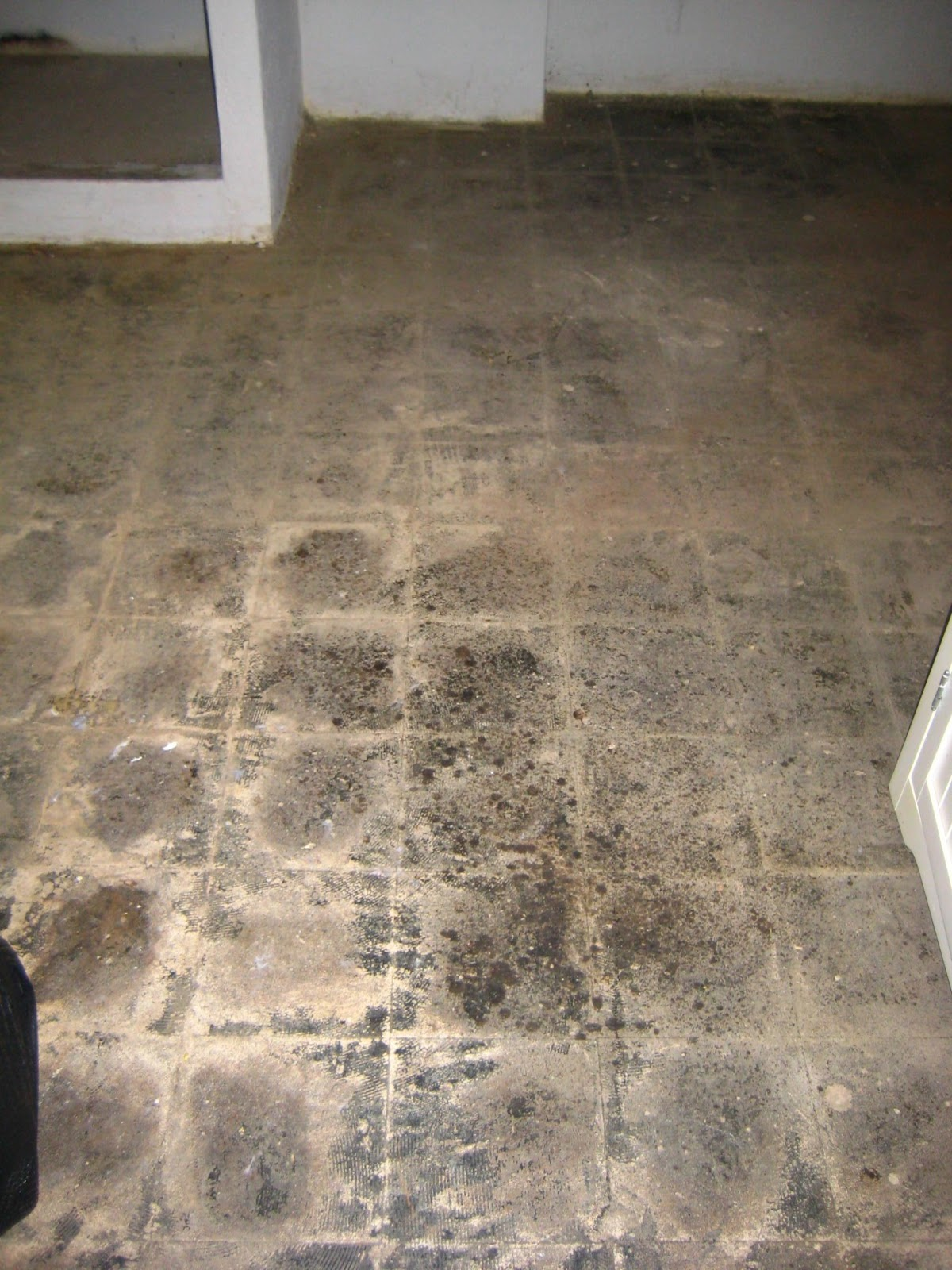 O town diary concrete floor paint for Painting on concrete floor