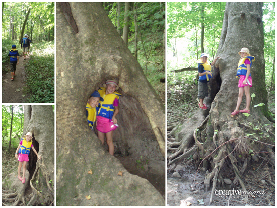 Treks in the Wild - Paris Ontario - Family Adventures in Southern Ontario