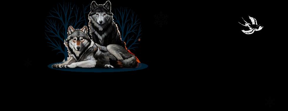 Cronicas de una loba esteparia