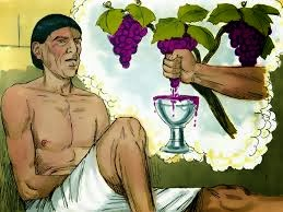 Butlers-dream-grape-vine-joseph-in-Egypt