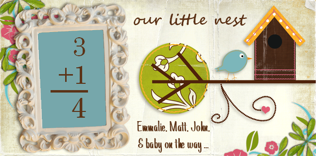 Our Little Nest - Emmalie, Matt, John and Baby on the way