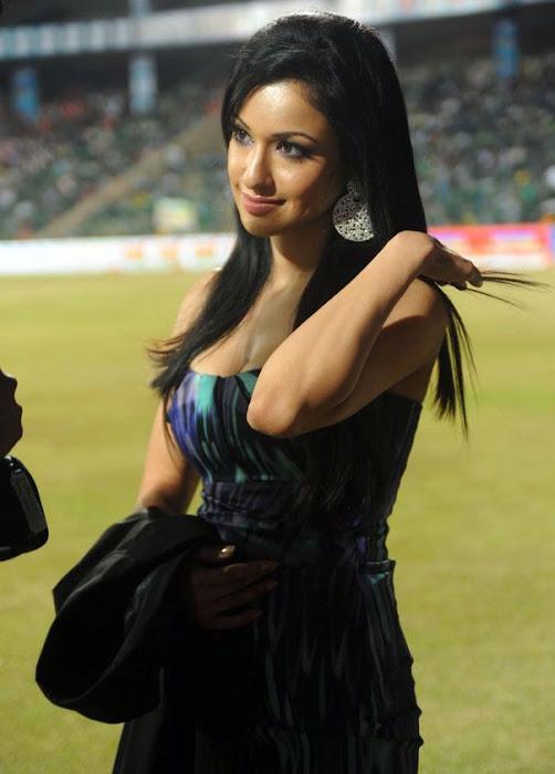 madhuri bhattacharya at ccl photo gallery
