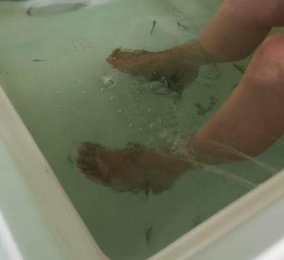 Dangers fish pedicure