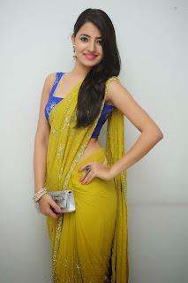 Ruksha Meer sizzling in saree 018.JPG