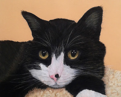 Black, White, Cat, Freckle, Pet, Pet Portrait, Pastel Painting, Art, Hand Painted, Fine Art, Traditional