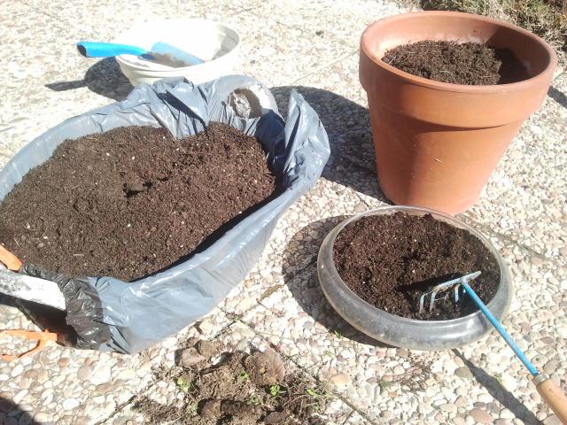 un jardín en la sierra de madrid: tierra para macetas