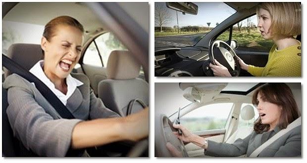 driving fear program guide