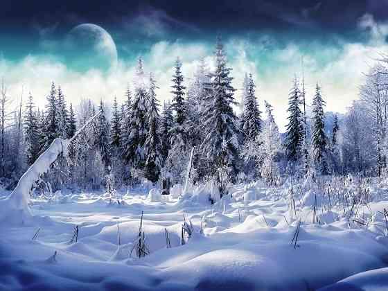 paisajes de invierno