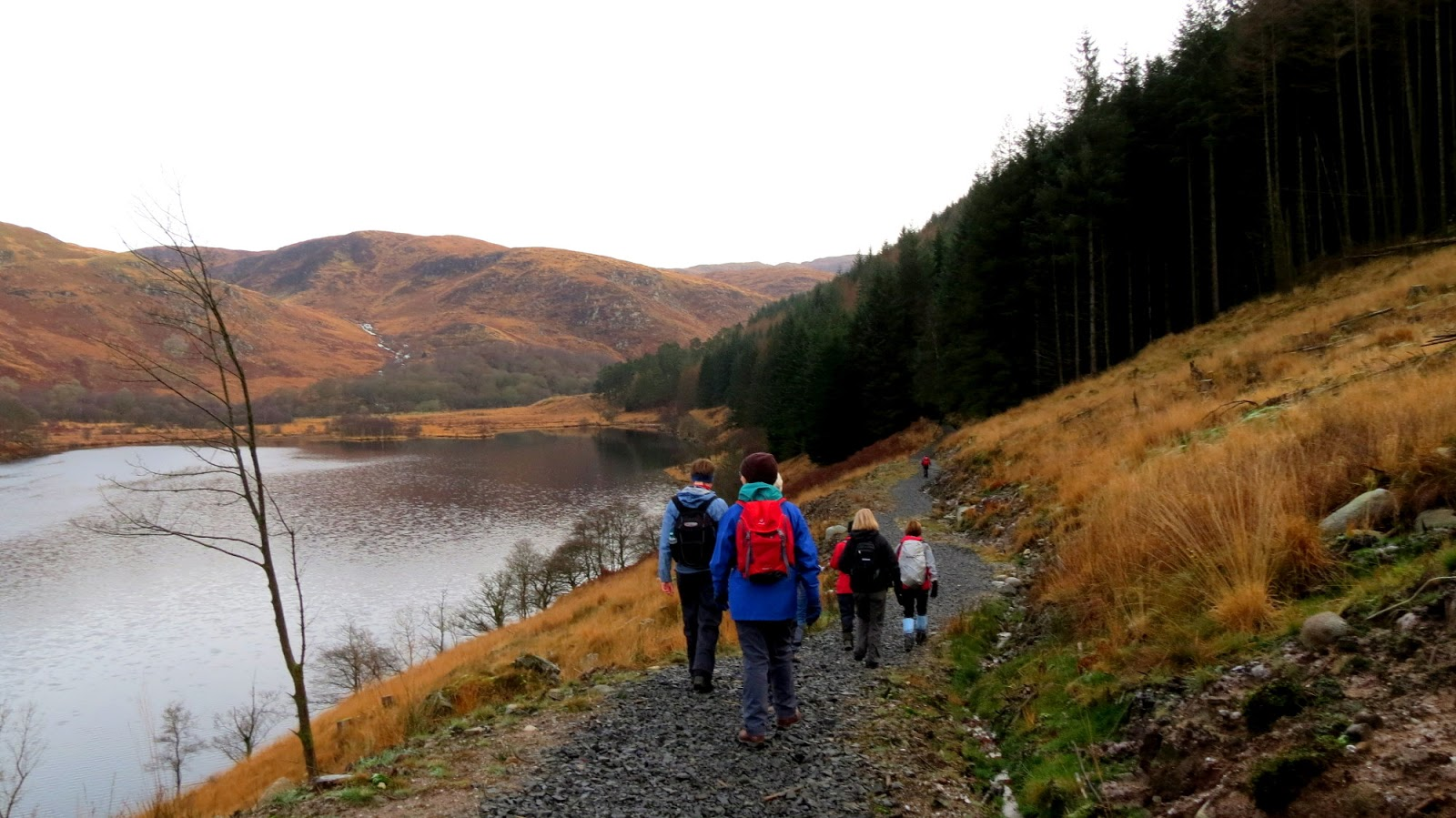 The Glebe Blog: Wigtownshire Ramblers Loch Trool 25th November 2012