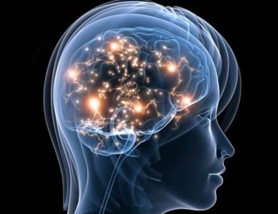 Resultado de imagen de Más grande el cerebro o el universo