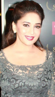 Sidarth, Madhuri , John & Dia at Saifta Awards 2013 Red Carpet