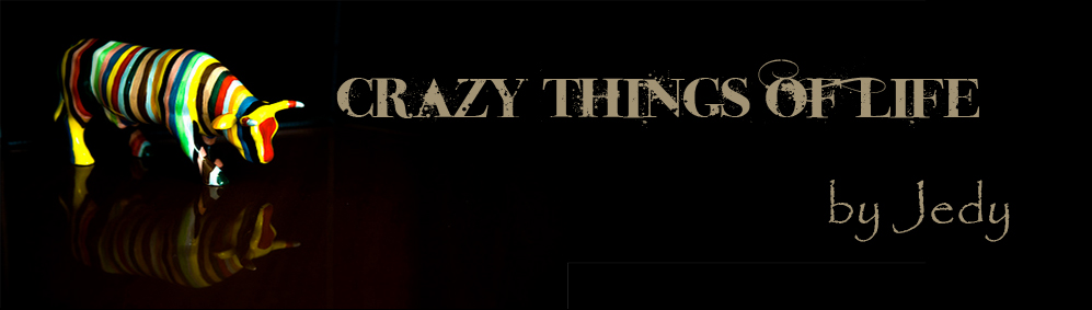 Crazy Things of Life