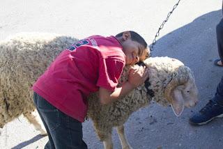 Par vos dons, fêtez l'Aïd Al-Adhâ avec les orphelins de Gaza