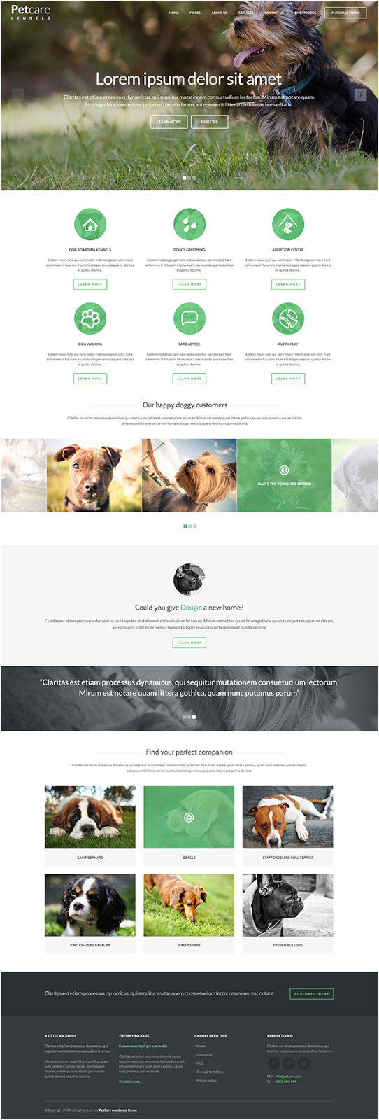 Pet Care Website theme