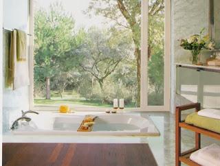 Bathtubs dream