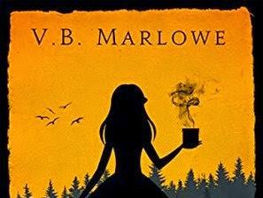 Novel Of The Week: Shadow, Shadow by V.B. Marlowe