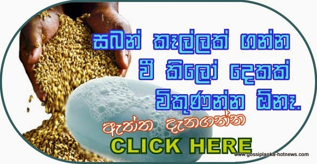 http://www.gossiplanka-hotnews.com/2014/08/rm-ranjith-madduma-bandara-talk.html