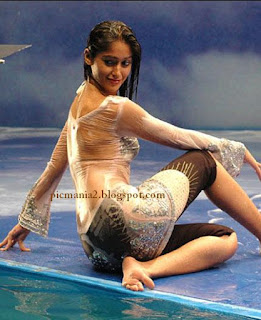 south india actor ilena  sexy Wet image gallery exposing hot in saree