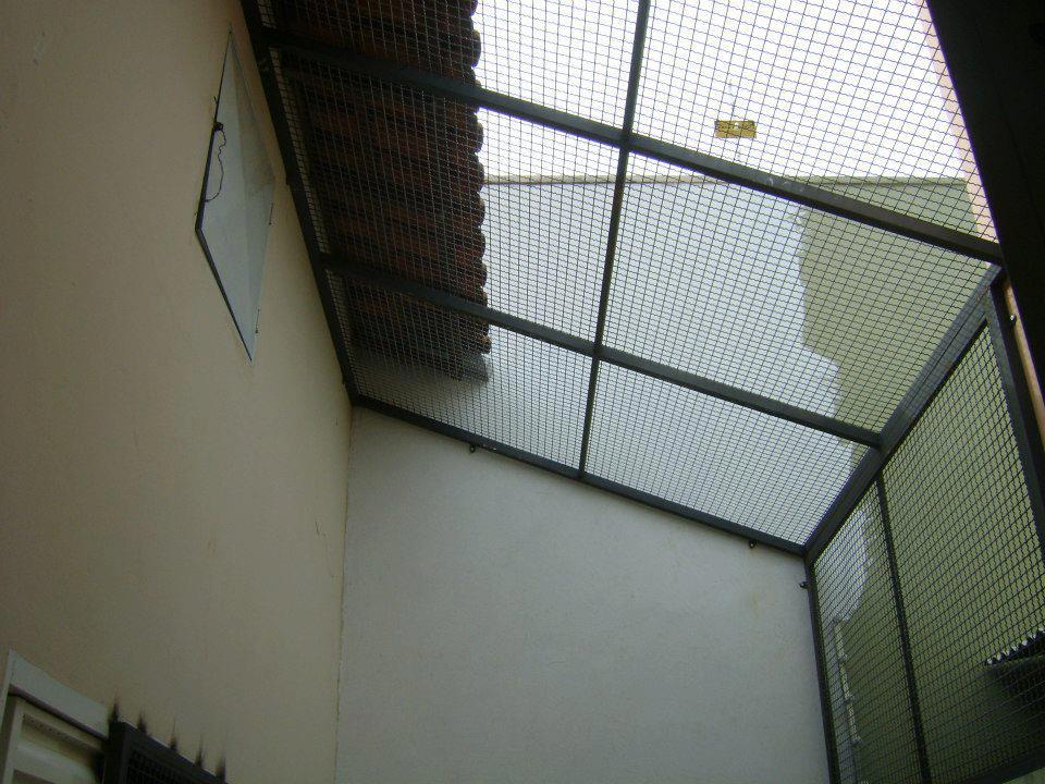 Todo sobre mi gato gatos paracaidistas y soluciones cerramientos redes gateras verjas - Como cerrar una terraza uno mismo ...