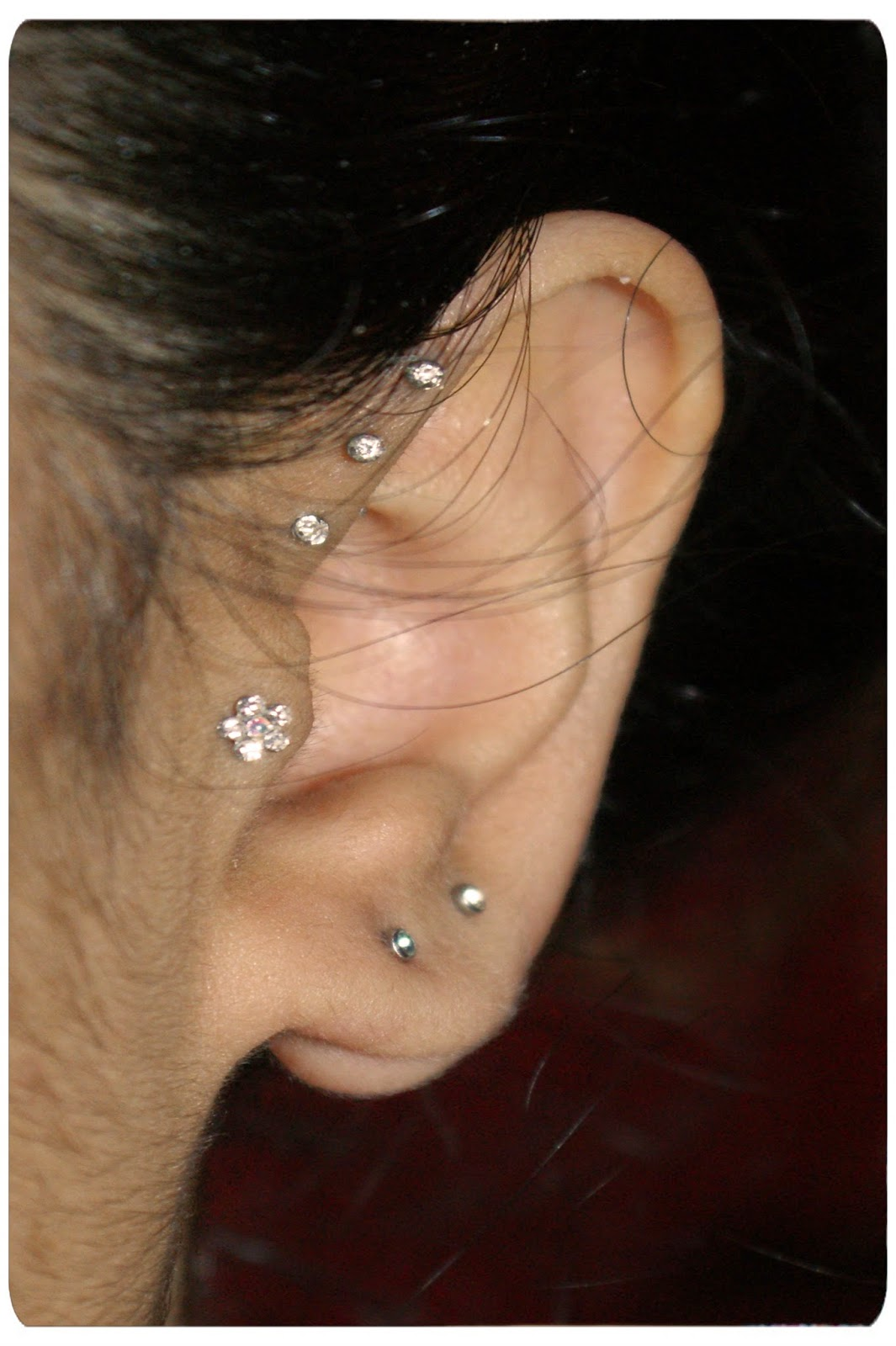 Earrings My Piercings Experiences And Advice Updated The