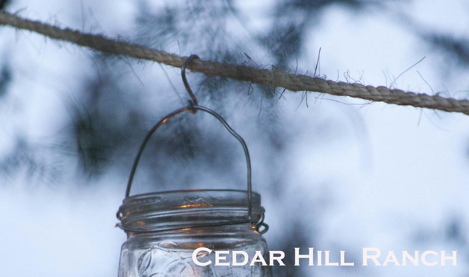 Mason Jar Lights - Cedar Hill Farmhouse