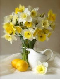 Spring Refreshing