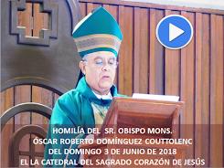 VIDEO DE LA HOMILÍA DEL SR. OBISPO, DEL DÍA  3 DE JUNIO DE 2018