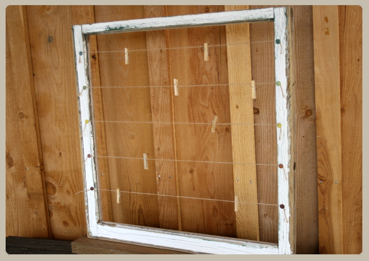 Poisonberry vine diy jewelry display using old window for How to use an old window as a picture frame