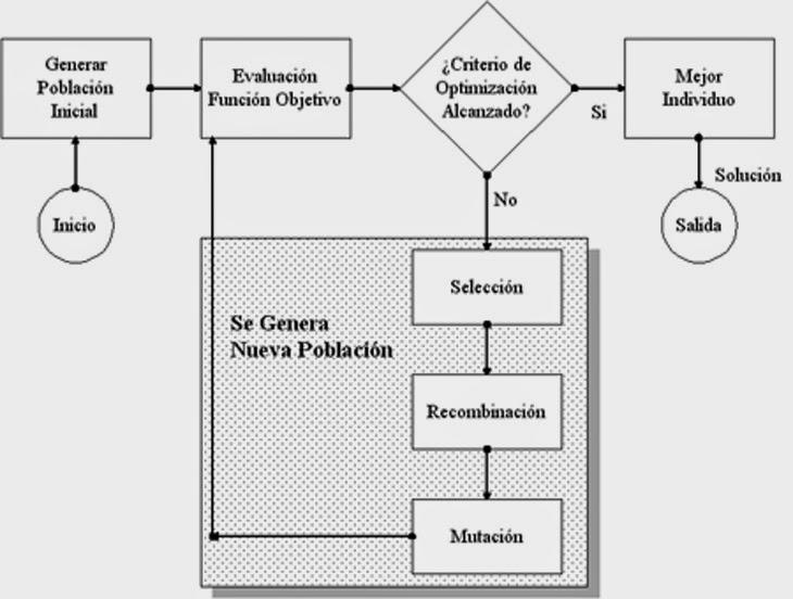 ESTRUCTURA DE ASIGNACION algoritmos
