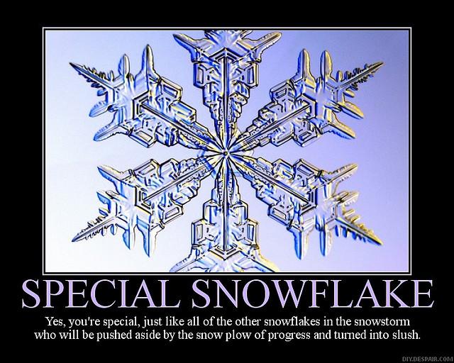 Special%2Bsnowflake.jpg