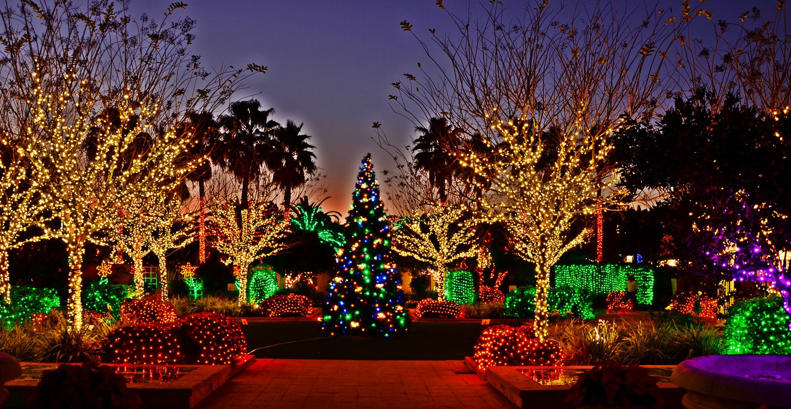places to see christmas lights in the tampa bay area - Bay Area Christmas Lights