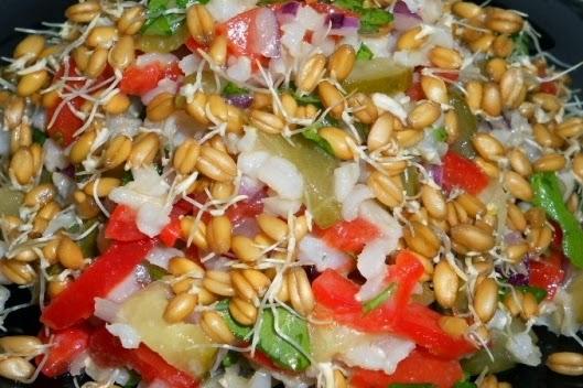 рецепты салатов с капусты и маслом