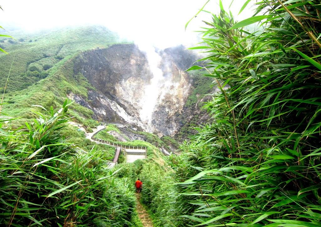 Travelholic Hiking In Yangmingshan Taiwan Grassland