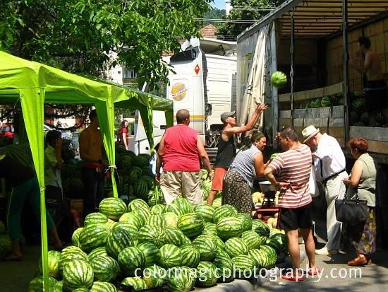 Watermelon street vendors-unloading watermelons