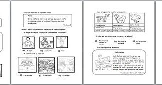 Pruebas estandarizadas para el nivel Primaria - UGEL 05 ~ RUTAS DEL ...