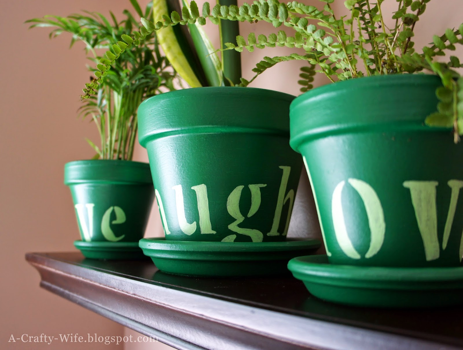 Painted and stenciled terra cotta pots for houseplants | A Crafty Wife