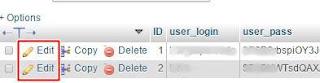 mengatasi tidak bisa login WP-Admin